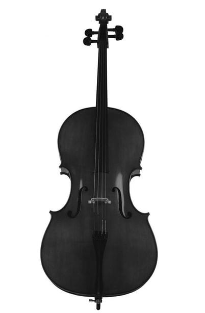 The Body Type Cello Idealist Style